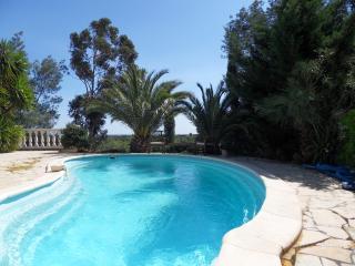 Fantastic villa with pool - Laroque des Alberes vacation rentals