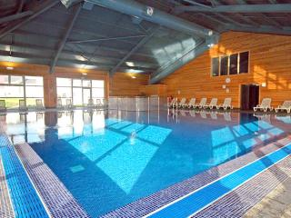Apollo Lodge Sauna, Pool & Gym - Newquay vacation rentals