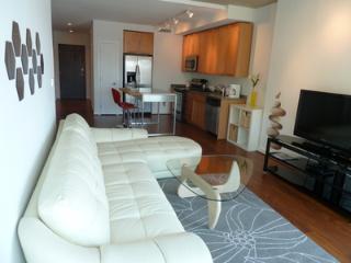 Great 2 BD in U St Corridor(214) - Washington DC vacation rentals