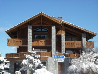 Le Ski D'Or - Les Carroz-d'Araches vacation rentals
