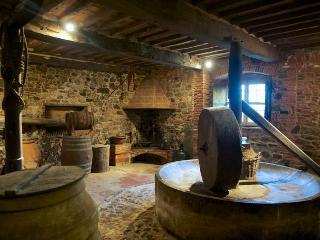 Agriturismo A Franciotto - Lucca vacation rentals