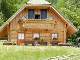 Chalet La Perla Nera - Tarvisio vacation rentals