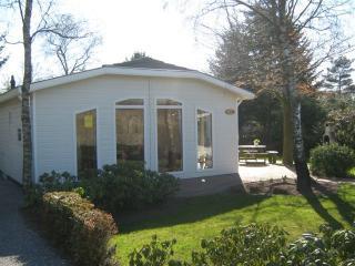 Loorelei - Apeldoorn vacation rentals