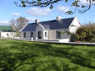 Old Farm Cottage - Sligo vacation rentals