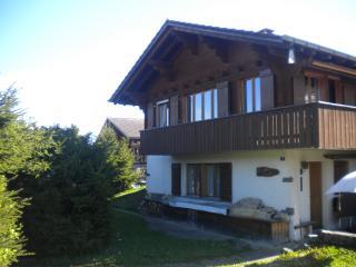 Chalet Tannegg (EG) direkt an Skipiste - Aeschiried vacation rentals