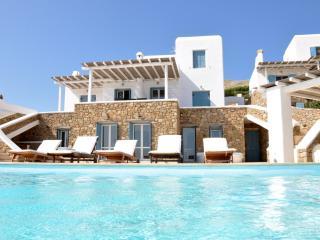 Luxurious Infinity Pool Villa in Mykonos - Mykonos vacation rentals