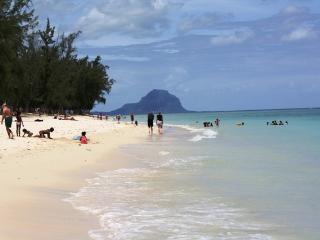 Les Camelias - Flic En Flac vacation rentals