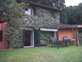 Villa in Grottaferrata - Grottaferrata vacation rentals