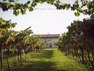 B&B Relais Mozart - Rovereto vacation rentals