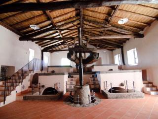 Tocco e il Palmento Faraglioni - Catania vacation rentals