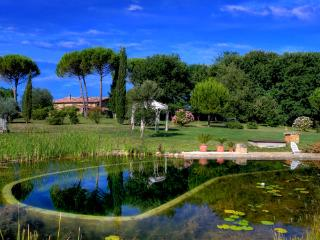 2 bedroom villa near Siena - BFY13572 - Siena vacation rentals