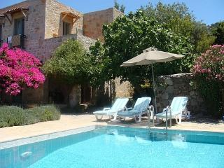 Mulberry House, stylish villa with private pool - Gokcebel vacation rentals