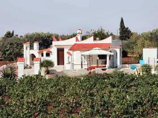 Villa Serena - San Vito dei Normanni vacation rentals