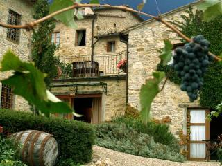 il Casello Country House B&B - Greve in Chianti vacation rentals