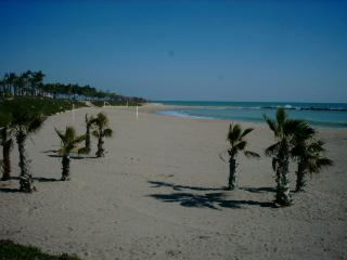 Tarraco Mar - Vinaros vacation rentals