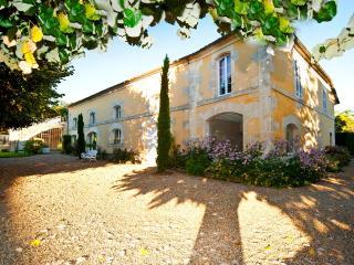 Domaine du Treuil-Les tilleuls - Burie vacation rentals