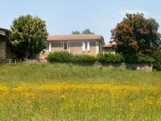 Pyrenean Rose - Montrejeau vacation rentals