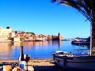 L'aquarelle 1 - Collioure vacation rentals