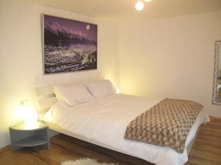 Happy Mountains Apartment 1 - Leutasch vacation rentals