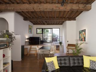 Apartment in the historic center of Antwerp - Antwerp vacation rentals