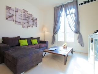 Stunning flat with AC and Balcony - Nice vacation rentals