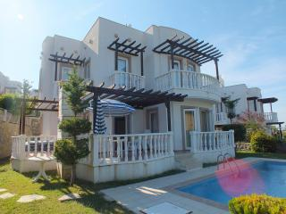 Tuseta Holiday Villa BEG1 - Yalikavak vacation rentals