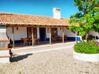 Casa Laranjeira - Monte da Quinta (3 bedrooms) - Castro Verde vacation rentals