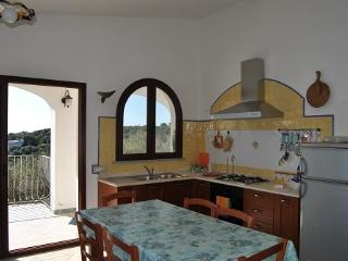 Apt fpr 2 in front of the sea - Cala Liberotto vacation rentals