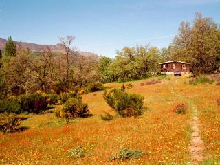 LosEnebrosDeGredos - Zapardiel de la Ribera vacation rentals