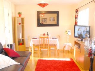 Belfast City Apartment - Belfast vacation rentals