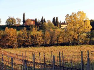 ROMIGNANO WINE FARM - Terranuova Bracciolini vacation rentals