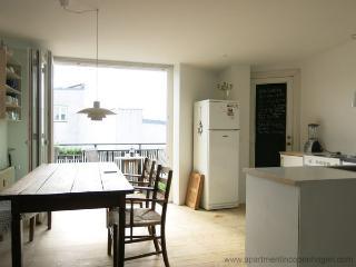Elmegade - Close To Sankt Hans Torv - 585 - Denmark vacation rentals