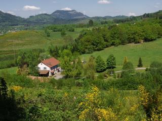 gîte de la Pieviche - Gerardmer vacation rentals