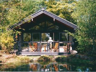 Cameron House - Alexandria vacation rentals