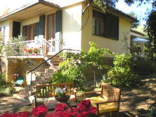 Casa nel Chianti - San Casciano in Val di Pesa vacation rentals