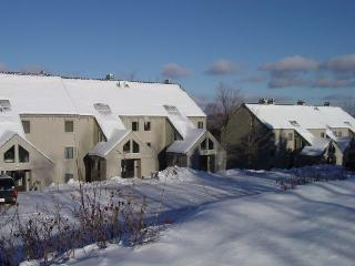 Whiffletree Condo E8 - Three bedroom Two bathroom Shuttle to Slopes/Ski Home - Image 1 - Killington - rentals