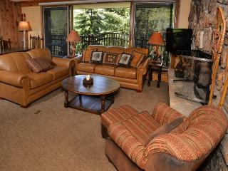 2 bedroom in the heart of Vail Village overlooking the Gore Creek - Vail vacation rentals