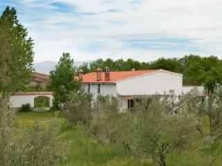 B&B Sierra Nevada Andalusia - Guadix vacation rentals