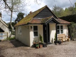 The Amberfold Lodge - Midhurst vacation rentals