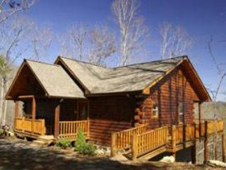 Bear Trax - Fontana Dam vacation rentals