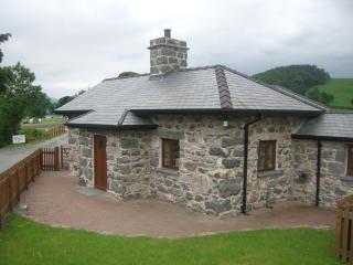 Glanllyn Lodge - Llanycil vacation rentals