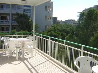 501 Tenor Fleta - La Pineda vacation rentals