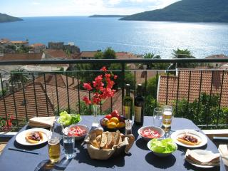 Zuta Kuca (The Yellow House) - Herceg-Novi vacation rentals