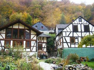 Sauerwein's Mühle - Sankt Goarshausen vacation rentals