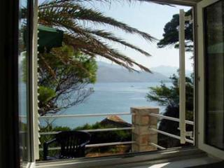 20 m from sandy beach - Dubrovnik-Neretva County vacation rentals