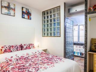 Next to metro station 9 d'octubre. car not needed. - Valencia vacation rentals