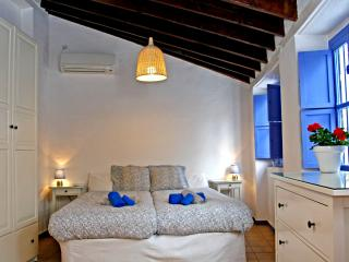 Penthouse down town Seville - Province of Seville vacation rentals