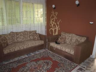 Downtown apartment - Cairo vacation rentals