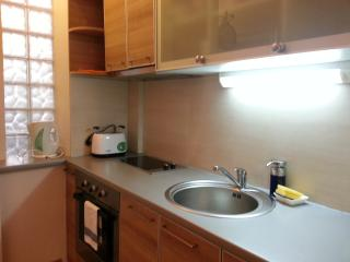 Two bedroom apartment CIty Center - Belgrade vacation rentals