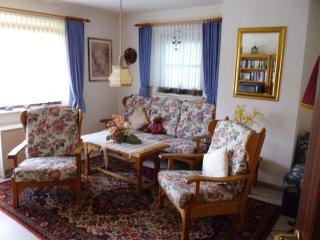 Apartment in Strobl Wolfgansee - Strobl vacation rentals